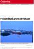 Fiskebåt gikk på grunn i østre havn i Svolvær