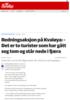 Redningsaksjon på Kvaløya: - Det er to turister som har gått seg tom og står nede i fjæra