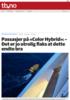 Passasjer på «Color Hybrid»: - Det er jo utrolig flaks at dette endte bra