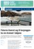 Fiskerne klamret seg til bergveggen- les om dramaet i bølgene