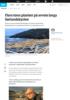 Flere tonn planker på avveie langs sørlandskysten