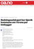 Redningsselskapet ber Gjøvik kommune om 1 krone per innbygger